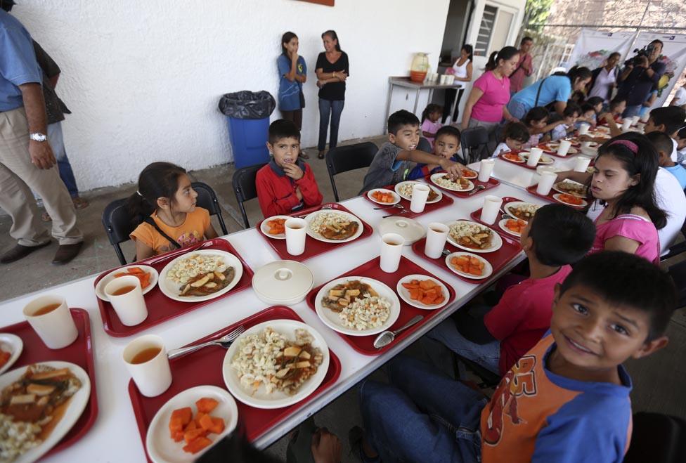 Los 'Roba pollos' hicieron de las suyas en Colegio de Tasajera